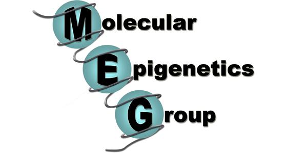 MEG_560px_300px[1].jpg