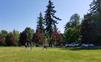 Summer frisbee